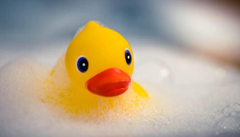 Gul gummiand i badevann.
