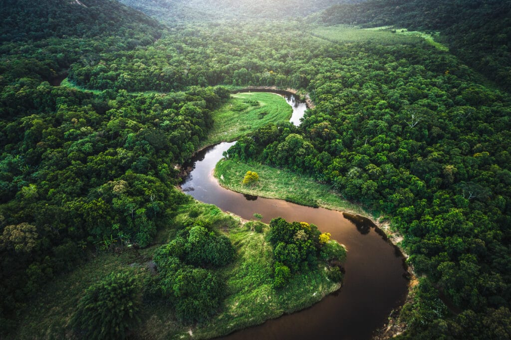 Luftfoto av Amazonas